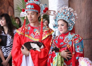 Valentine's Day: Chiang Mai, Thailand: Rabbits tie the knot