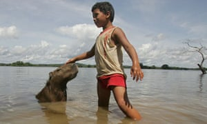 A boy plays with a capybara on the banks of the Xingu River near Altamira, Brazil