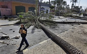 Libya 26 Feb: A Libyan man walks past felled palm trees used as roadblocks