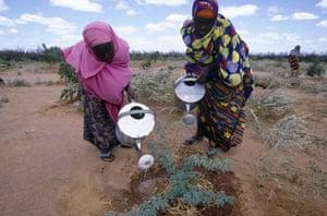 Dadaab refugee camp: 20th anniversary, Kenya