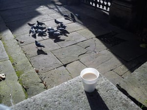 Connection at St Martin's: Tom: Pigeons and Tea