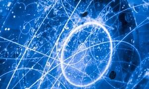 neutrino science