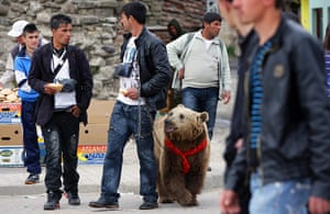 Week in Wildlife: Two Albanian Roma people with a bear
