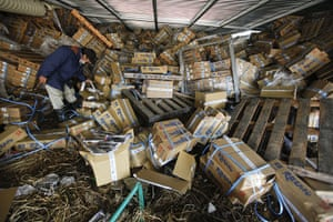 Japan salvage: A man picks up a boxof frozen salmon at a fish company's storage building