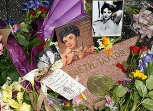 Elizabeth Taylor tribute: Flowers Placed On The Hollywood Walk Of Fame Star Of Elizabeth Taylor
