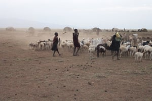 Pastoralism in crisis: Through horn of Africa : Turkana, Kenya