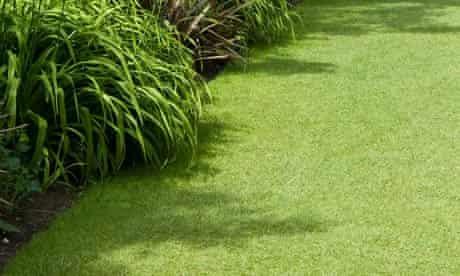 Garden week: Lawns