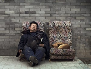 from the agencies: A man sleeps with stray dogs in a hutong