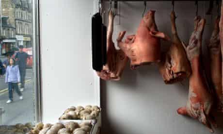 Meat in a butcher's window