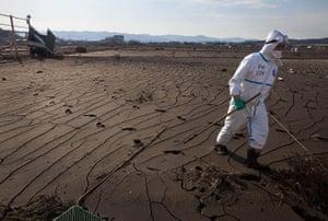 Fukushima disaster: 7 April: A Japanese policeman searches for victims in Minami Soma