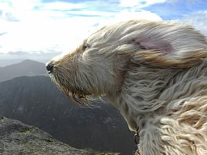 In Pictures: elements: Goat Fell on Arran