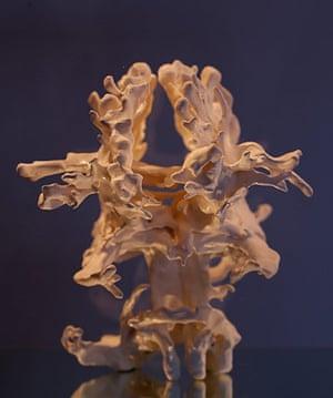 Human+ Exhibition: PLEASURE/PAIN, ANNIE CATTRELL