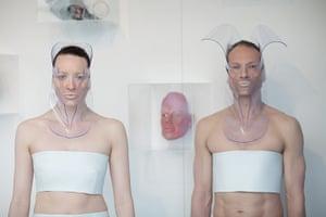 Human+ Exhibition: IMMORTAL SYNTHETIC, PATRICK IAN HARTLEY