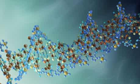A strand of DNA
