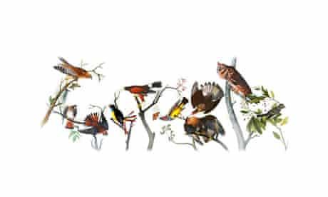 Audubon google doodle