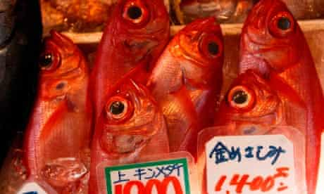 Fish on sale in central Tokyo
