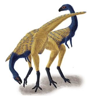 Dinosaur City: Dinosaur discoveries in China