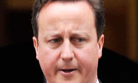 David Cameron said he 'had never heard' of health adviser Mark Britnell