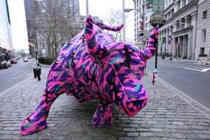 Olek: Wall Street Bull