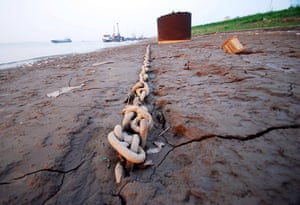 Drought in China: Chinas Yangtze river closed to ships by severe drought