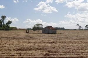 Deforestation for soybean: Alto Parana, Paraguay