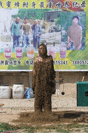 Bee suit: Zhang Wei after the challenge