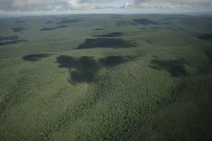 Paraguay : deforestation and soybean production
