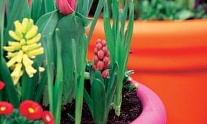 bright garden pots