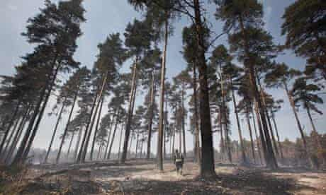 Firefighters Tackle Fires In Swinley Forest
