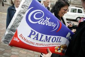 Friends of the Earth: Cadbury Schweppes AGM