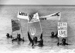 Friends of the Earth: Demonstration Against Whaling, Brighton, 1990