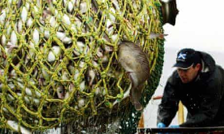 full fishing net