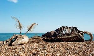 charles avery sea monster folkestone triennial