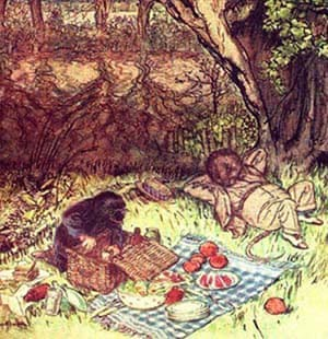 Literary picnics: The wind in the willows
