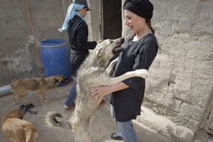FTA: Behrouz Mehri: An Iranian woman plays with a dog as she brings food donations