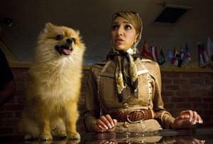 FTA: Behrouz Mehri: Tehran resident Farnaz talks to a vet about her Pomeranian dog Maggie