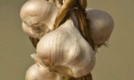 Food for Ford: Elephant garlic