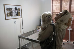 FTA: Behrouz Mehri: An Iranian woman speaks with her Terrier dog at a private pets' clinic