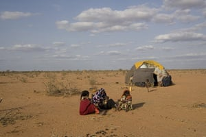Dadaab: Tent