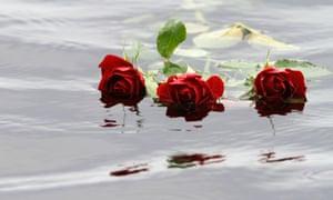 Red roses float in water near Utøya island