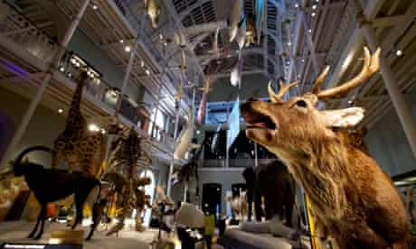 New National Museum of Scotland unveiled after £47m revamp ...