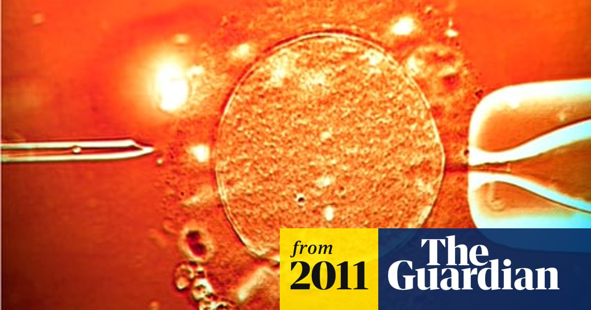 High doses of IVF drugs may cause harm to eggs | Science | The Guardian