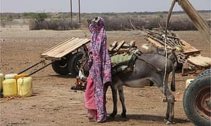 East Africa is in the grip of a drought after rains failed for a second year