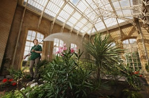 Wrest park: the conservatory