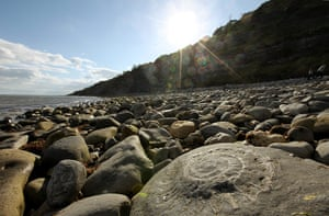 Jurassic Coast: Lyme Regis in Dorset, part of the Jurassic Coast World Heritage Site