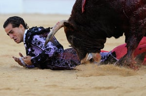 24 hours in pictures: Spanish matador Ivan Fandino is pushed to the ground by a bull