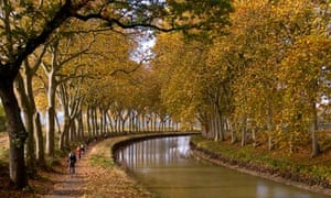 Epic beauty of tree-lined Canal du Midi under threat as