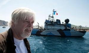 Paul Watson, captain of the Sea Shepherd