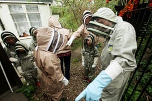 Bee-keeping club: head bee-keeper
