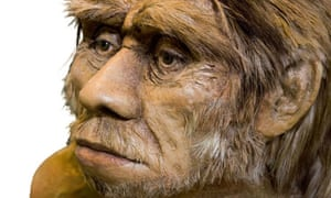 Model of a Neanderthal man